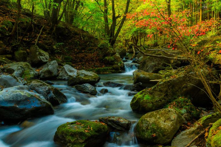 滝や渓流を撮影する方法