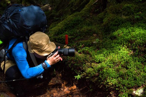 写真やカメラを副業にするメリット
